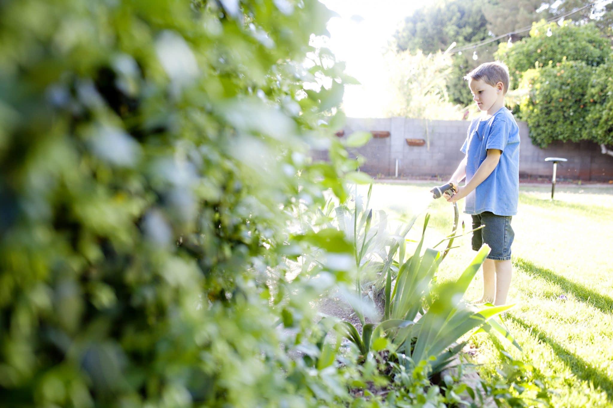 Comment bien entretenir son jardin toute l'année ?